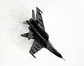 Su-35BM (3861863202).jpg