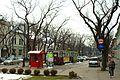 Subotica, tramvaje a třída Somborski put.jpg
