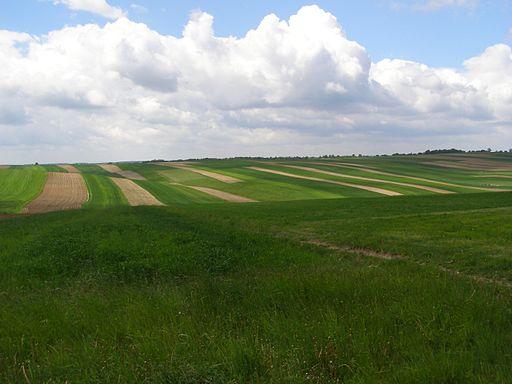 Suloszowa krajobraz 4