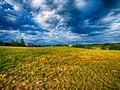Summer Evening Cloudy Sky (60327096).jpeg