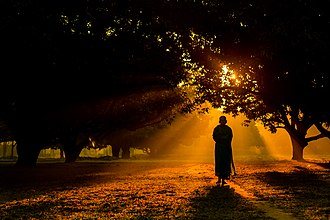Sannyasa - A Hindu monk is walking during sunrise in a mango garden Dinajpur, Bangladesh.