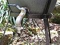 Sustainable sanitation (5013761053).jpg