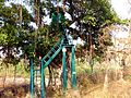 TREE HOUSE Corbet NATIONAL PARK.jpg