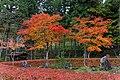 Takayama 2013 (11273084426).jpg
