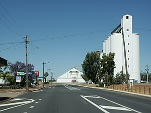 CBH grain receival points - Tammin wheat bins - older style storage on left, larger on right