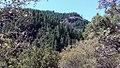 Tehama Co foothills (19094029785).jpg