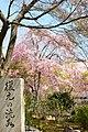 Tenryuji (3693019534).jpg