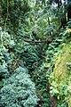 Termas da Ribeira Grande, paisagem envolvente, ilha de São Miguel, Açores.JPG