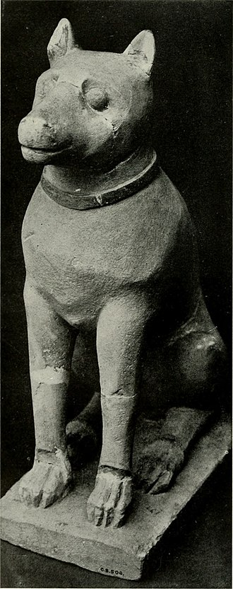 Caroline Ransom Williams - Erect-eared hound from Cyprus; 300-400 B.C. Metropolitan Museum of Art