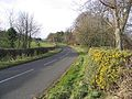 The B6353 near Kyloe Cottage - geograph.org.uk - 312585.jpg