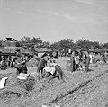The British Army in Normandy 1944 B9773.jpg