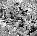 The British Army in North-west Europe 1944-45 BU2435.jpg