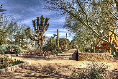 The Cactus Garden of the Springs Preserve.jpg