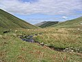 The College Burn nestling between The Schil and West Hill in The Cheviot Hills - geograph.org.uk - 235016.jpg