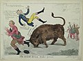 The Irish bull broke loose LCCN2004670133.jpg