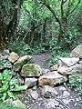 The Ruin of Trwyn-du - geograph.org.uk - 489772.jpg
