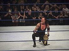 Wwe stacy keibler in ring