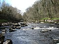 The end of Abbey Rapids - geograph.org.uk - 1235271.jpg