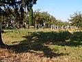 The mass grave of the Jews in Pochaiv (13).jpg