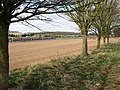 The trees marking the footpath frame a distant view - geograph.org.uk - 1243226.jpg