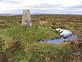 The trig point on Glendhu Hill - geograph.org.uk - 569575.jpg