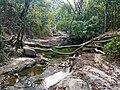 The way to Khoiyachora Waterfall.jpg