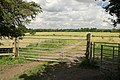 Track leading to the Ouse Valley plain - geograph.org.uk - 734355.jpg