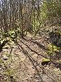 Track near Delph Hill, Southowram - geograph.org.uk - 399092.jpg