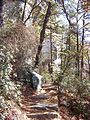 Trail at Pilot Mountain - panoramio.jpg