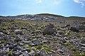 Trail on stones.jpg
