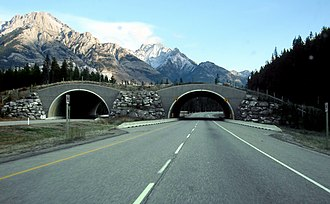 Trans-Canada Highway - Highway 1 with wildlife overpass, eastbound through Banff National Park in Alberta