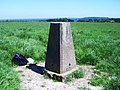 Trig Point 5548 Pilot - geograph.org.uk - 530887.jpg