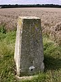 Trig Point No. S6789 - geograph.org.uk - 45102.jpg