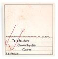 Triploidite-pas-23b.jpg