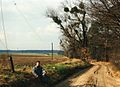 Trzaskowo, 5.3.1995r.jpg