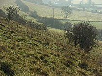 Turville Hill - geograph.org.uk - 295211.jpg