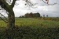 Twenty Acre Pit - geograph.org.uk - 607674.jpg