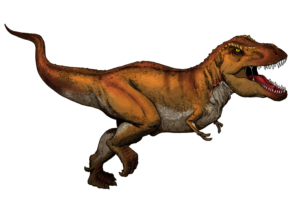 Tyrannosaurus Rex colored.png