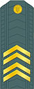 UA-SSGT-GSB.jpg