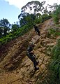 US Navy 070927-N-4267W-011 Seabees with Naval Mobile Construction Battalion (NMCB) 7 repel down a cliff during a jungle warfare training evolution hosted by Marines with the Jungle Warfare Training Command (JWTC).jpg