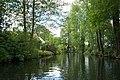 Unterwegs im Spreewald Wasserspiegelung.jpg