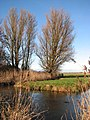 View across a drain - geograph.org.uk - 1110275.jpg