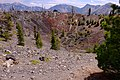 View inside crater of Wizard Island on Crater Lake 02.jpg