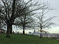 View of London City and The Shard from Greenwich Park,.jpg