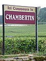 Vineyards in Chambertin in Bourgogne.jpg
