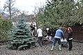 Volunteering (8620133556).jpg