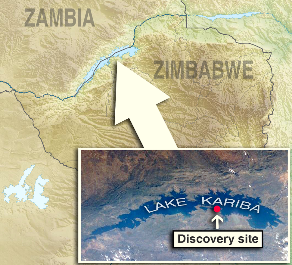 Discoverysite is located in Zimbabwe