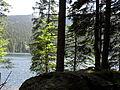Vylet k Cernemu jezeru Sumava - 9.srpna 2010 165.JPG