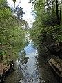 Waldweg von der Blauen Gumpe zum großen Ostersee.jpg