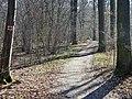 Wanderweg bei Ingersheim - panoramio.jpg